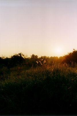 Sonnenaufgang in den Hügeln von Satu Mar, Rumänien