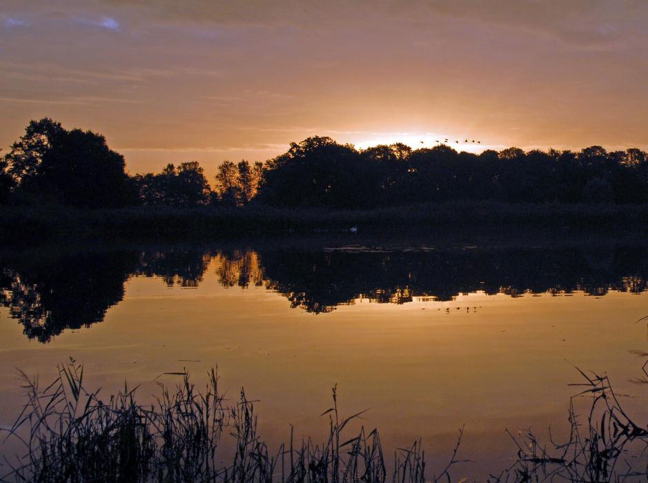 Sonnenaufgang in den Rieselfeldern