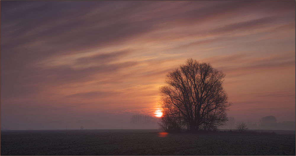 sonnenaufgang in der boddenregion