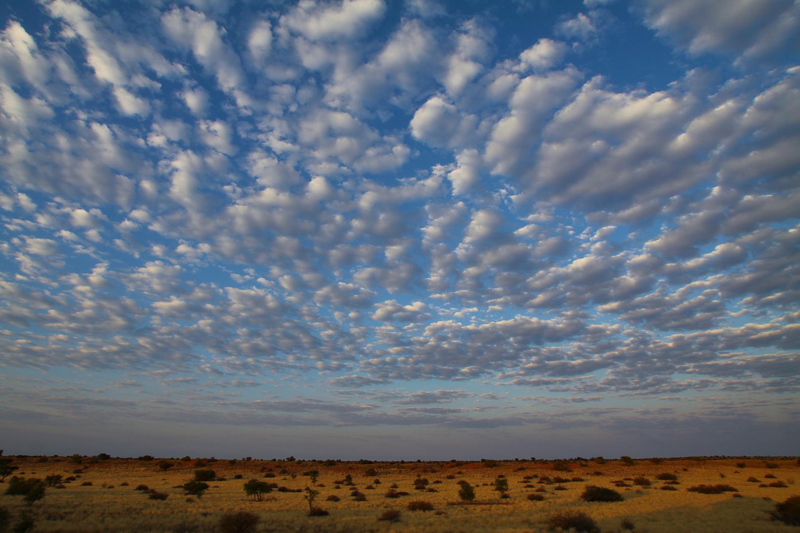 Sonnenaufgang in der Kalahari