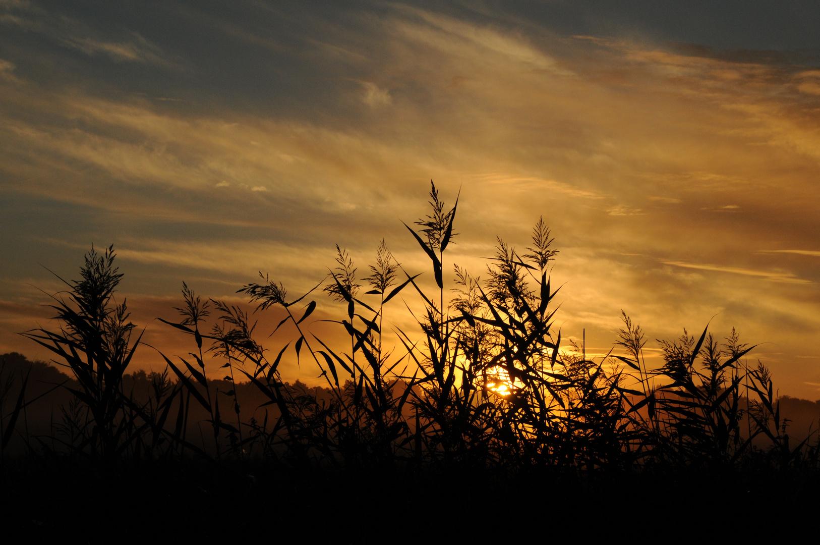 Sonnenaufgang in Dronningmölle 4