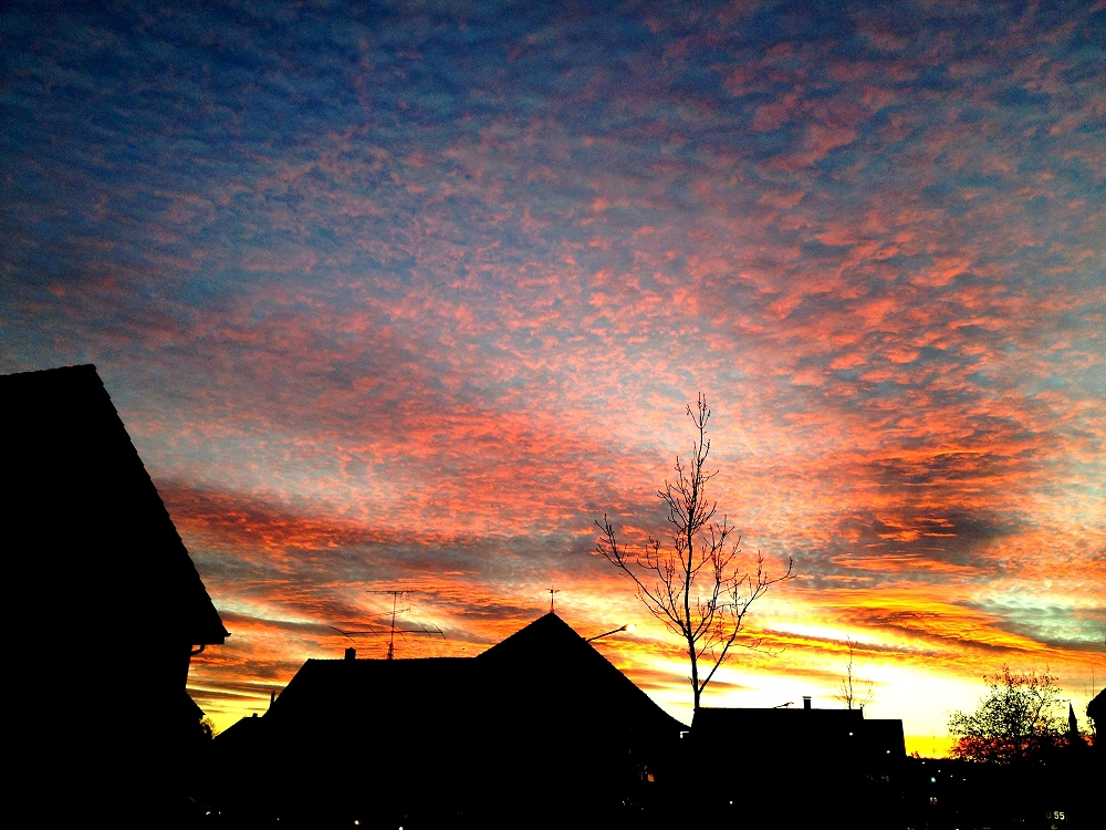 Sonnenaufgang in Hiddenhausen