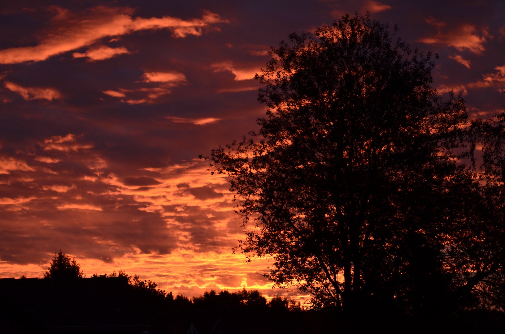 Sonnenaufgang in Lüneburg