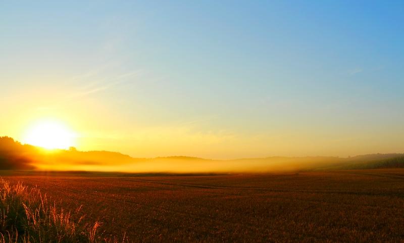 Sonnenaufgang in Mecklenburg im Morgennebel