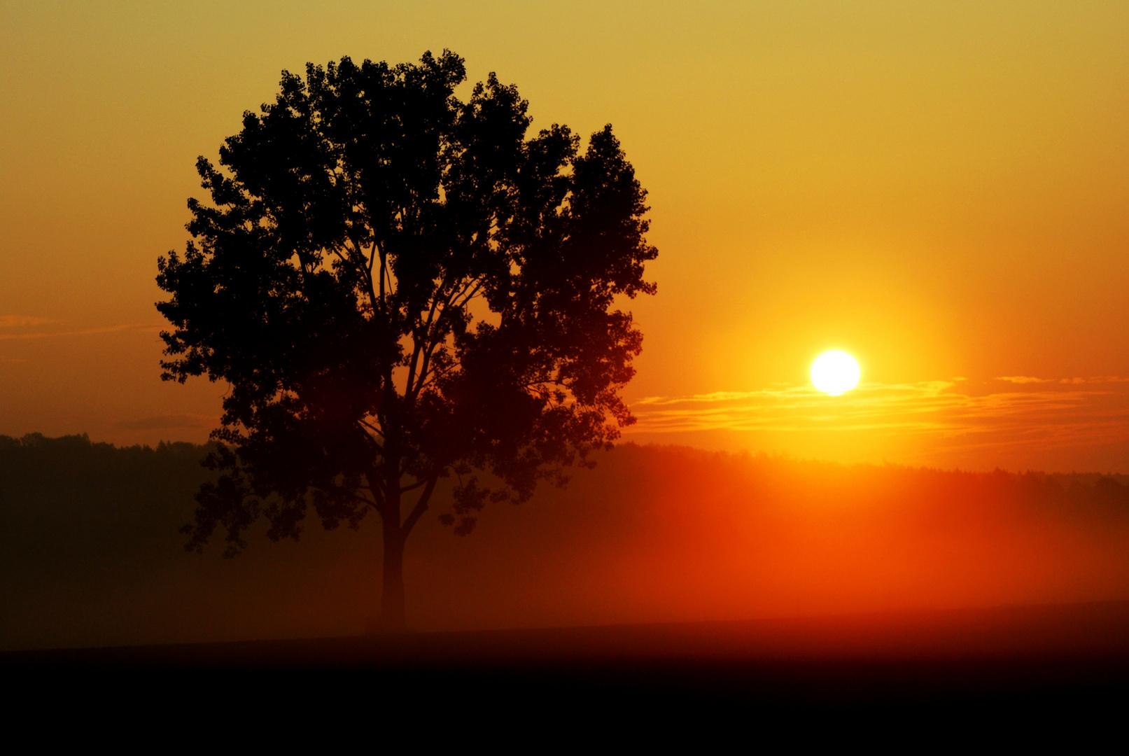 Sonnenaufgang in Oberfranken