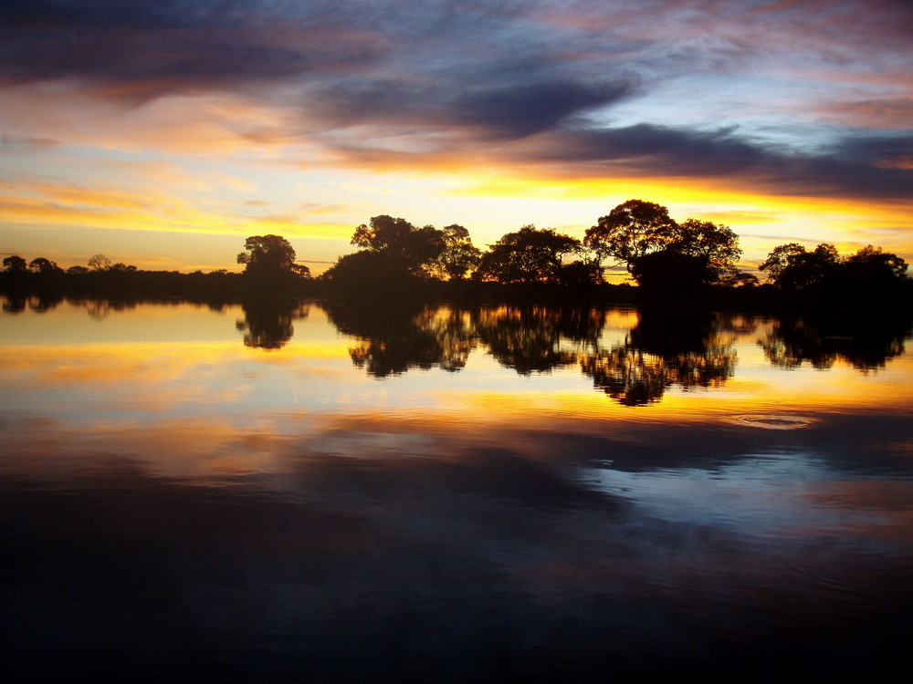 Sonnenaufgang in Pantanal