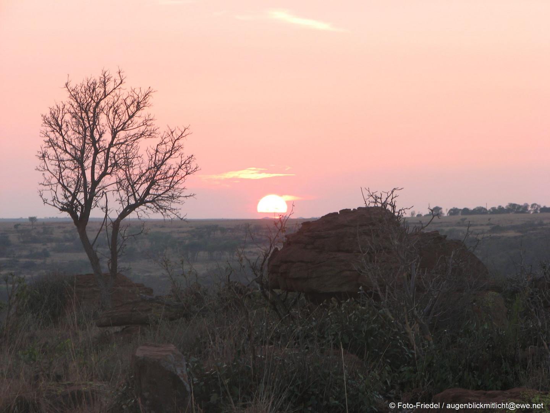 Sonnenaufgang in Renosterpoort