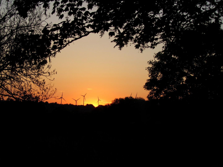 Sonnenaufgang in Sachsen Anhalt