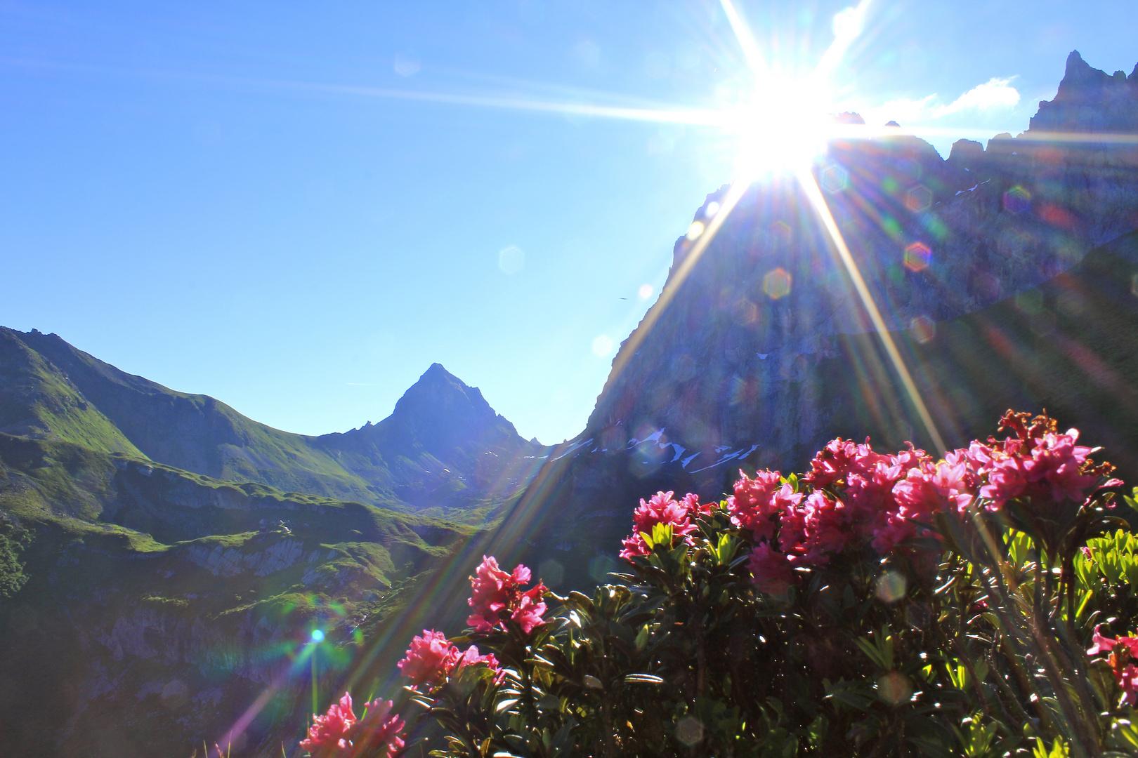 Sonnenaufgang in Seewli, Silenen