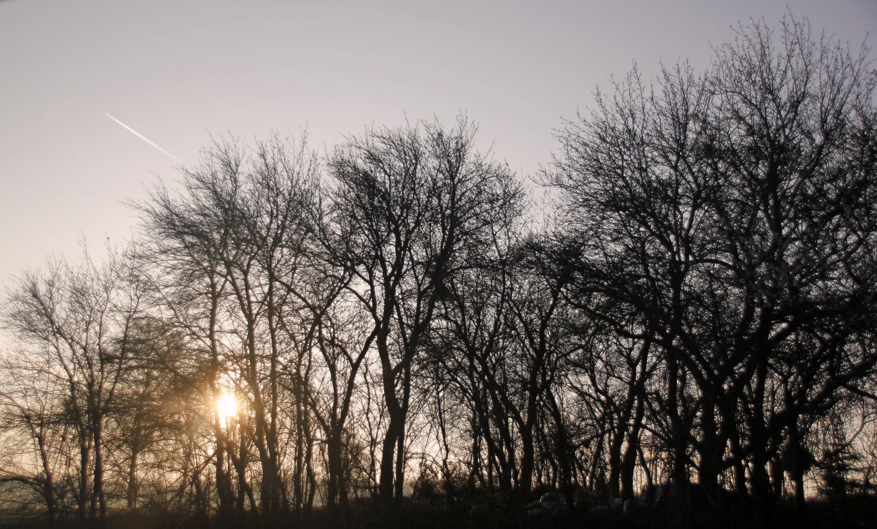 Sonnenaufgang in Strempt