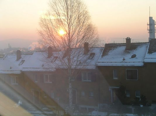 Sonnenaufgang in Zürich bei tiefstem Winter