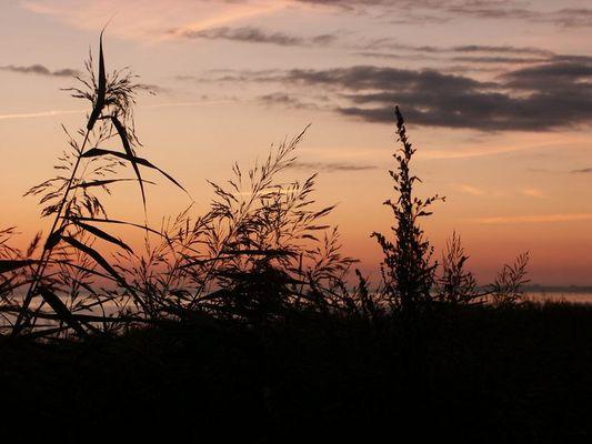 Sonnenaufgang Keitum/Sylt