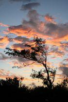 Sonnenaufgang Mauritius