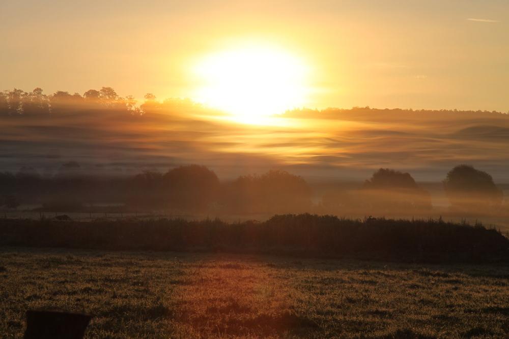 Sonnenaufgang mit Nebel