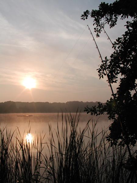Sonnenaufgang mit Ruten