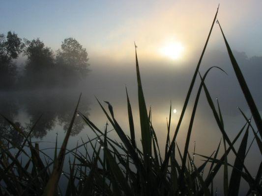 Sonnenaufgang Nebel und ein See um 7:57:46