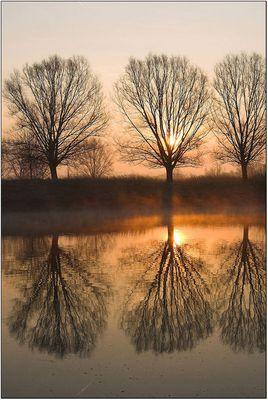 Sonnenaufgang Oost Maarland Niederlande