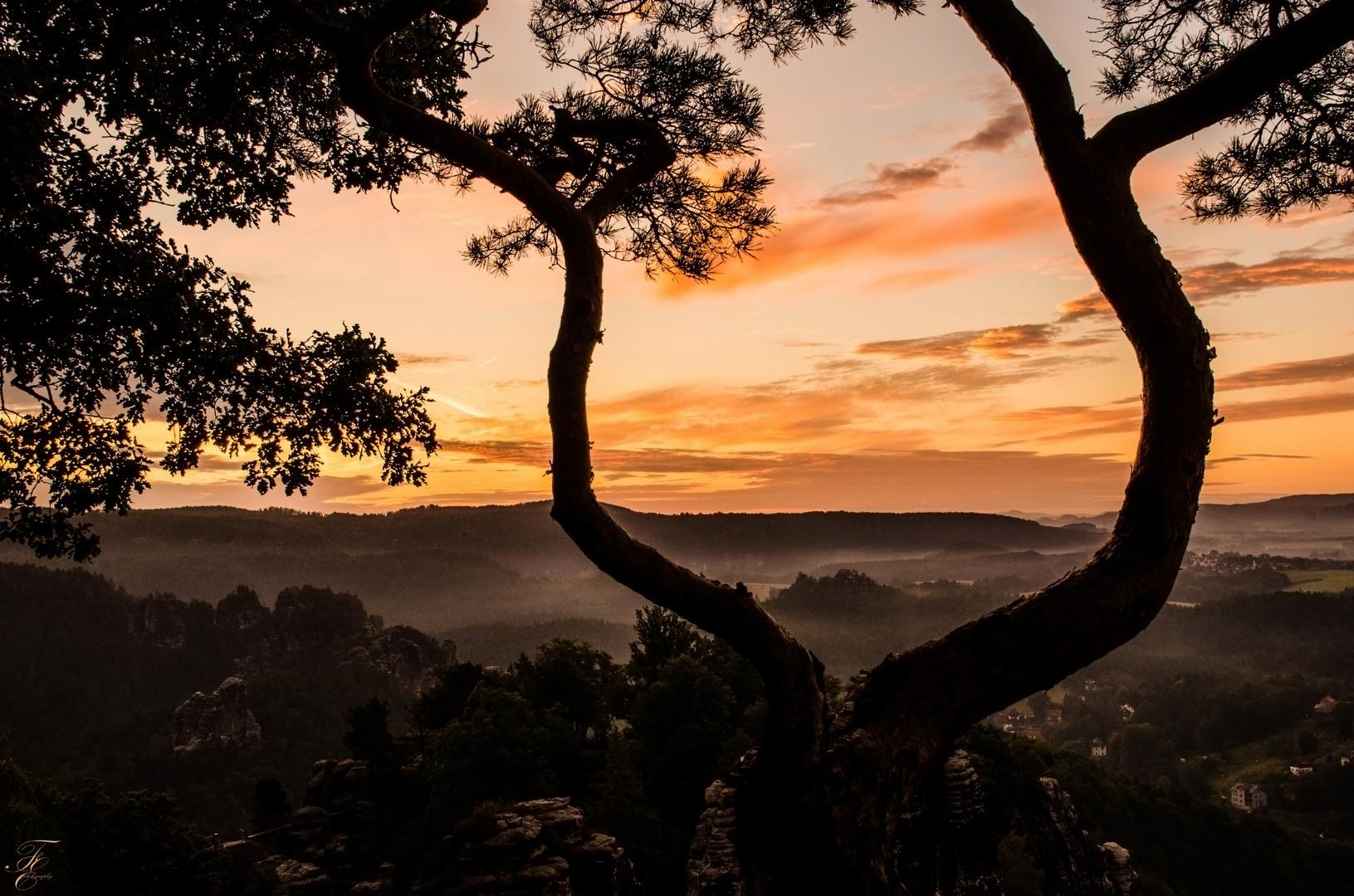 Sonnenaufgang sächsische Schweiz
