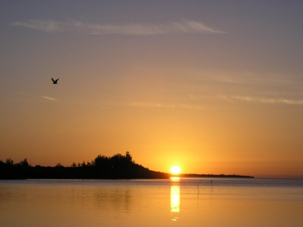 Sonnenaufgang über Bimini ( Bahamas)