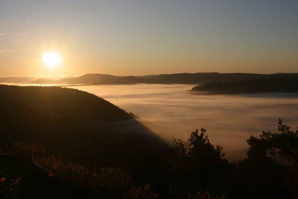 Sonnenaufgang über dem nebligen Pfälzer Wald