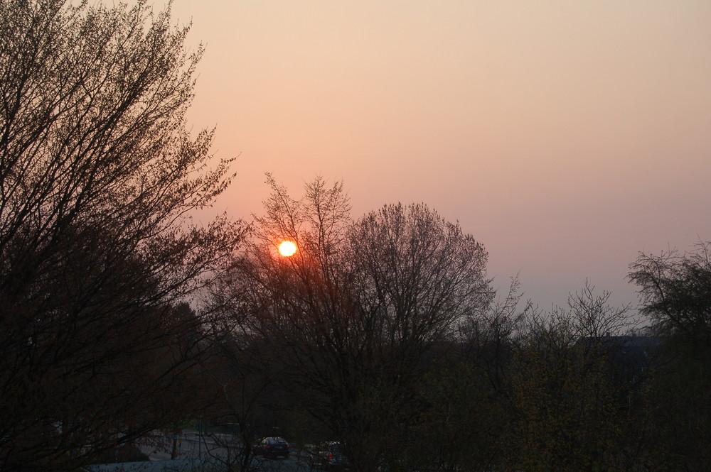 Sonnenaufgang über dem Stadtpark von Wilhelmshaven