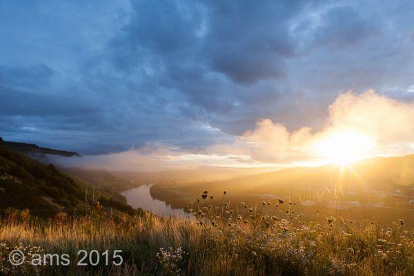 Sonnenaufgang über der Mosel...