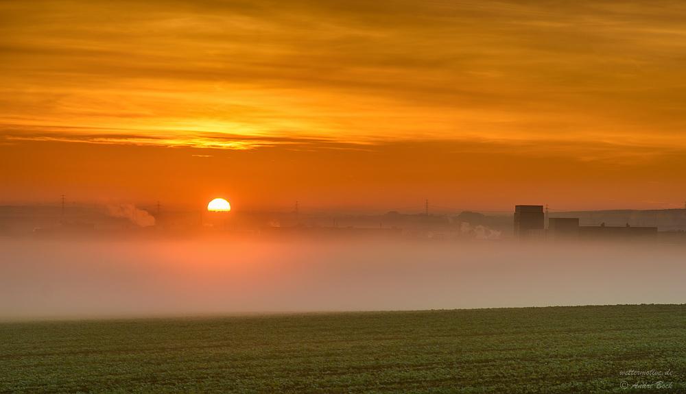 Sonnenaufgang über der Nebelbank