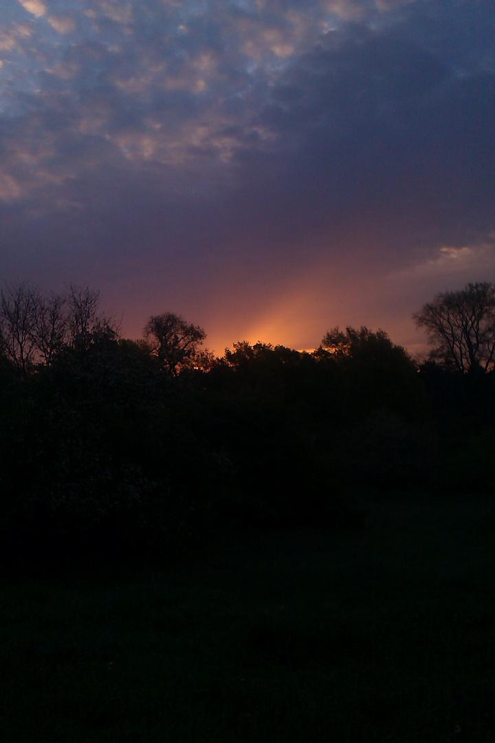 Sonnenaufgang über Dessau