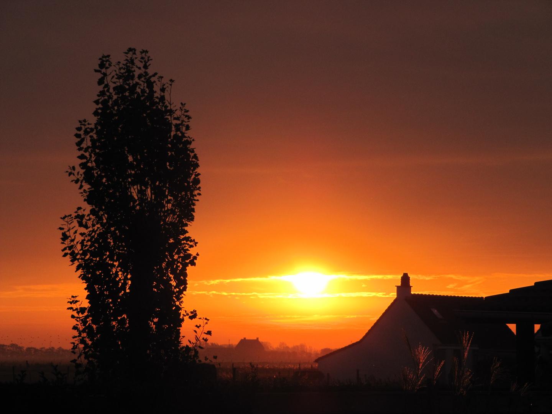 Sonnenaufgang über Flandern