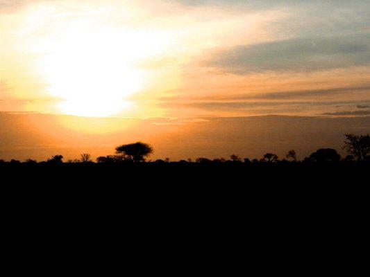 Sonnenaufgang über Kenia (bearbeitet)