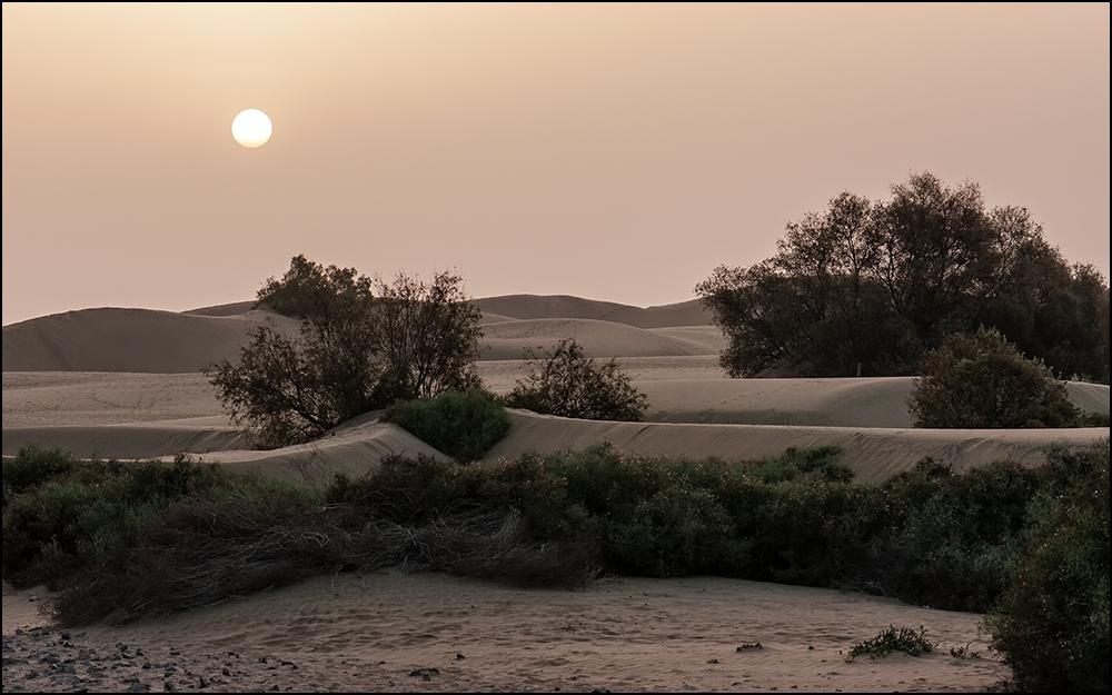 Sonnenaufgang über Las Dunas