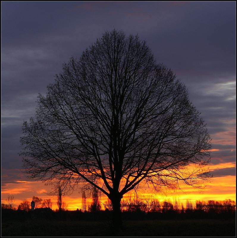Sonnenaufgang über Löderburg