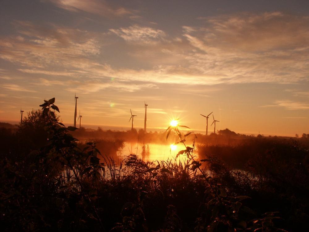 Sonnenaufgang vor dem Windpark