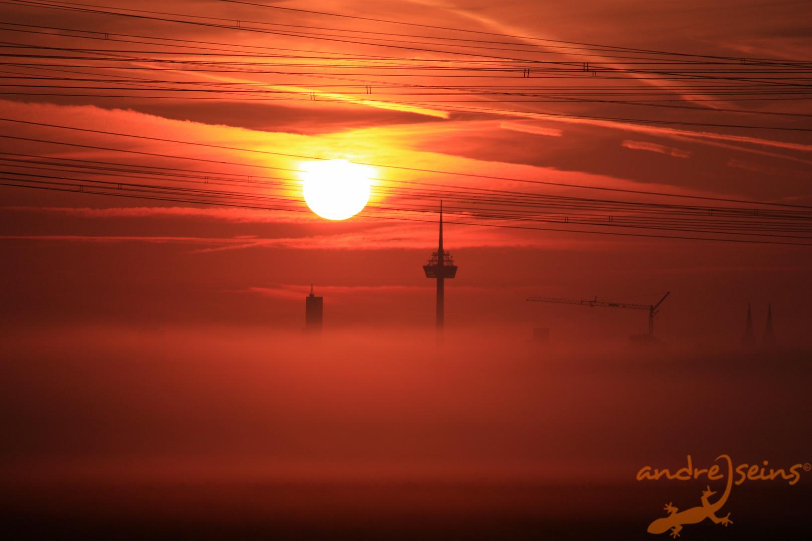 Sonnenaufgang vor Köln