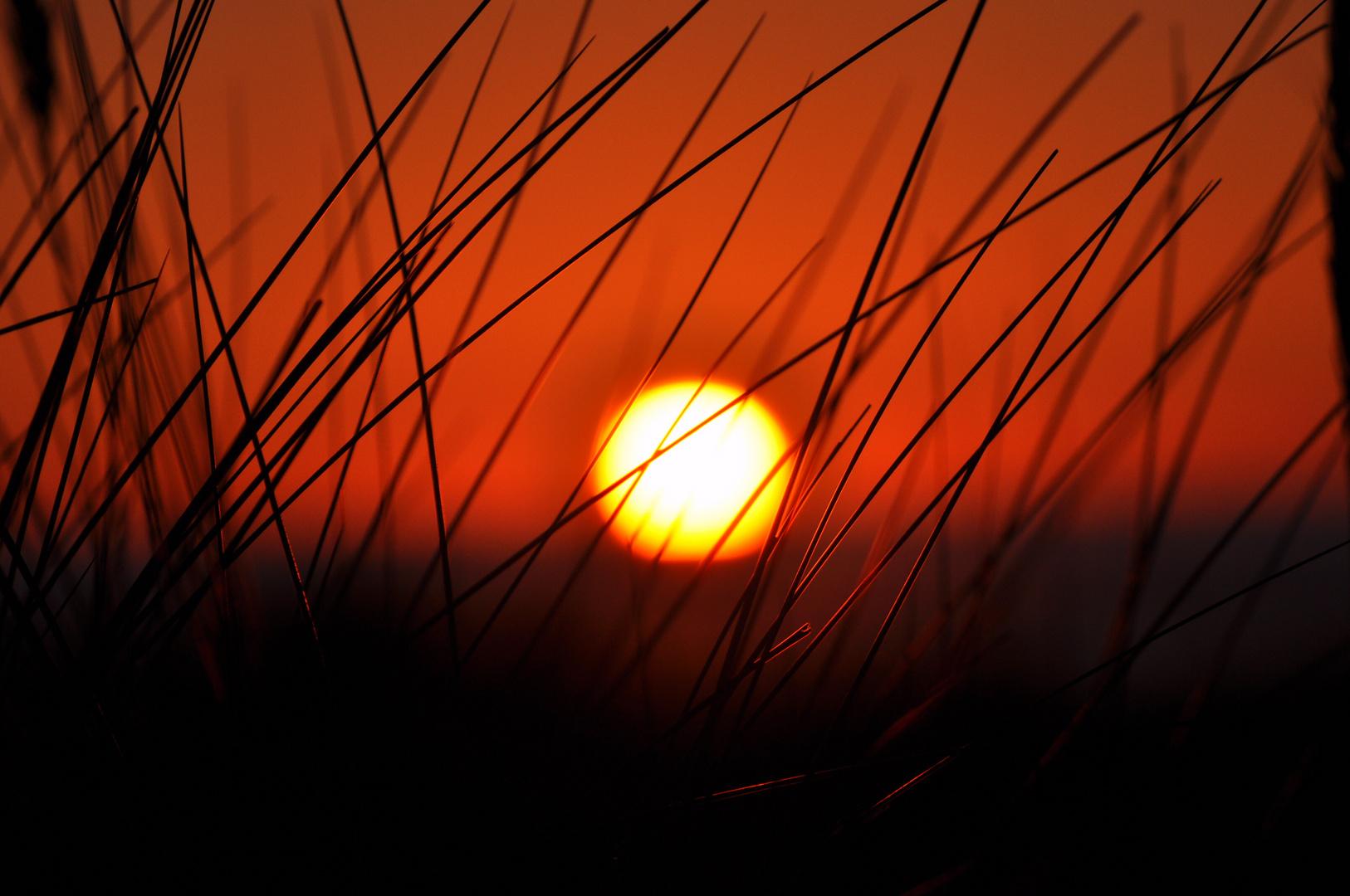 Sonnenaufgang Wangerooge