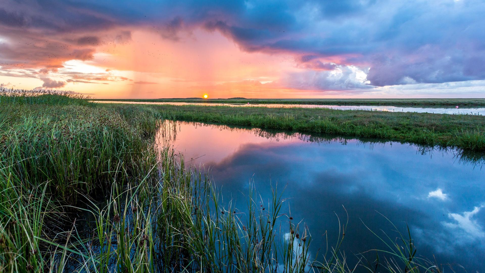 Sonnenaugang auf Fanö / Dänemark