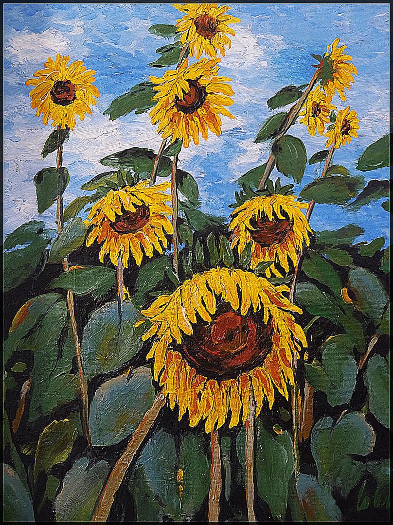 Sonnenblumen 3