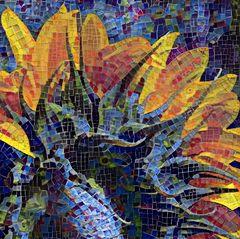 sonnenblumenrücken