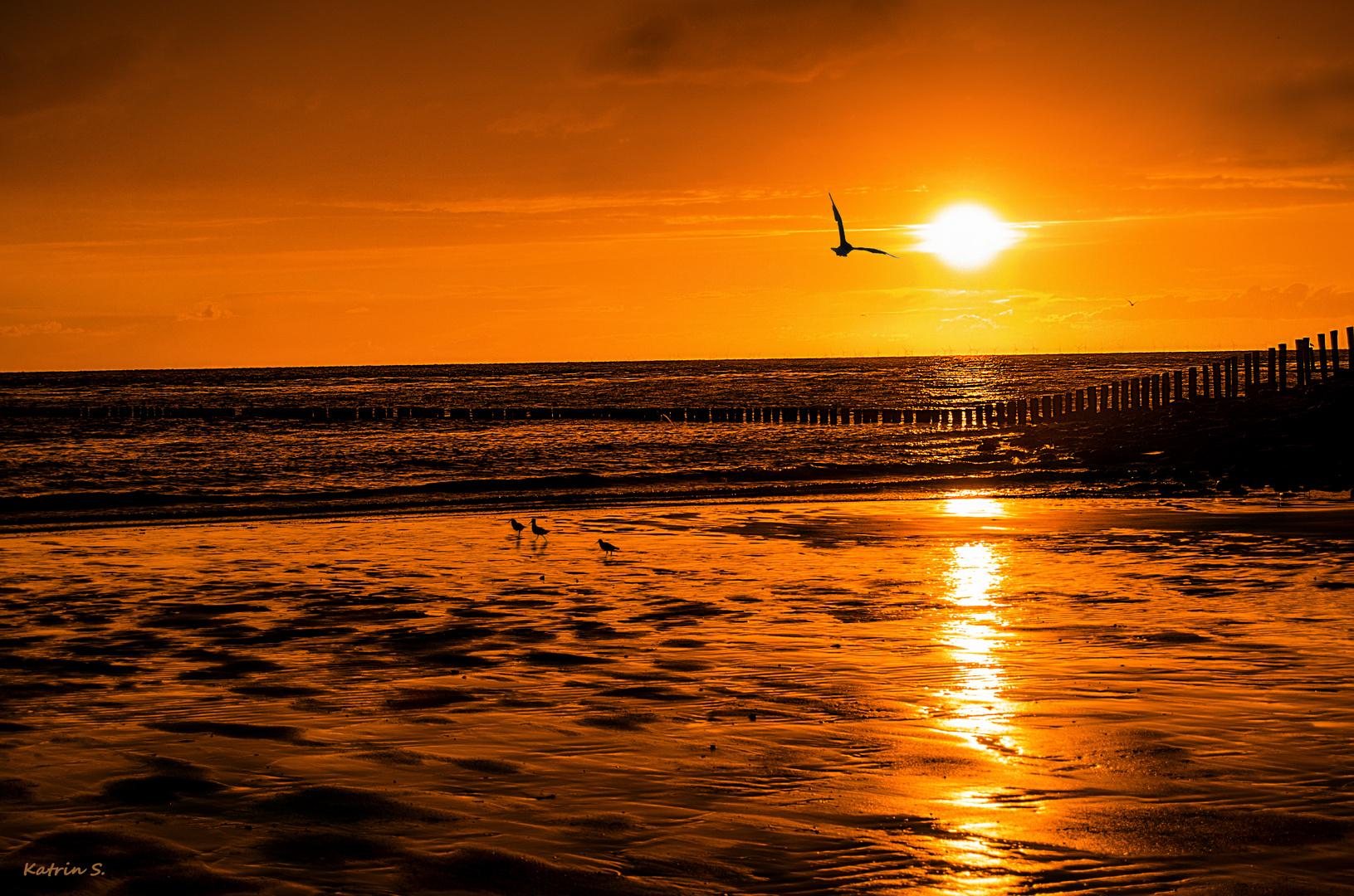 Sonnenentergang
