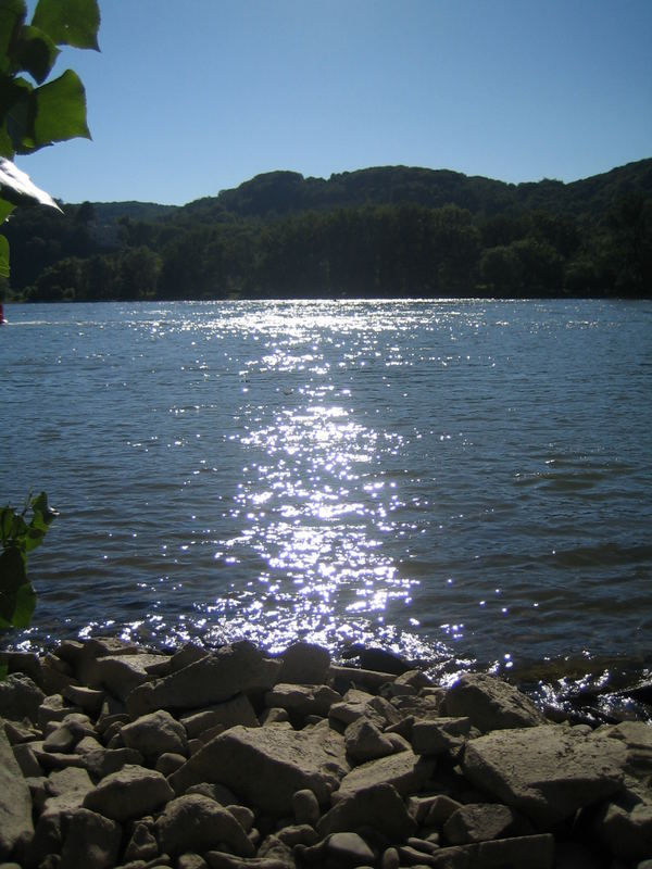 ...Sonnenflitter auf dem Rhein... :-)