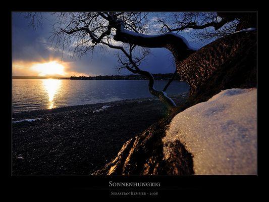Sonnenhungrig
