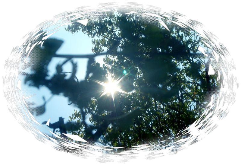 Sonnenlicht