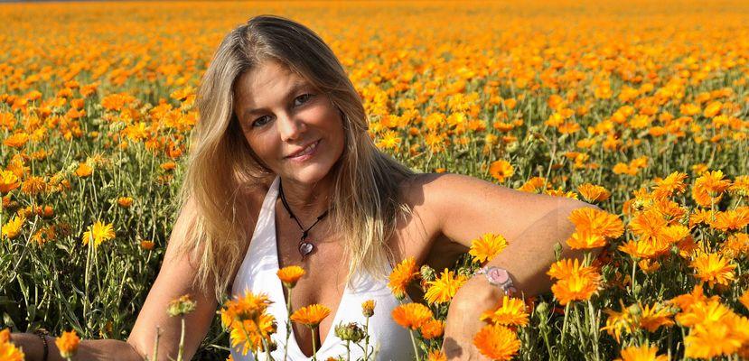 Sonnenschein in den Ringelblumen