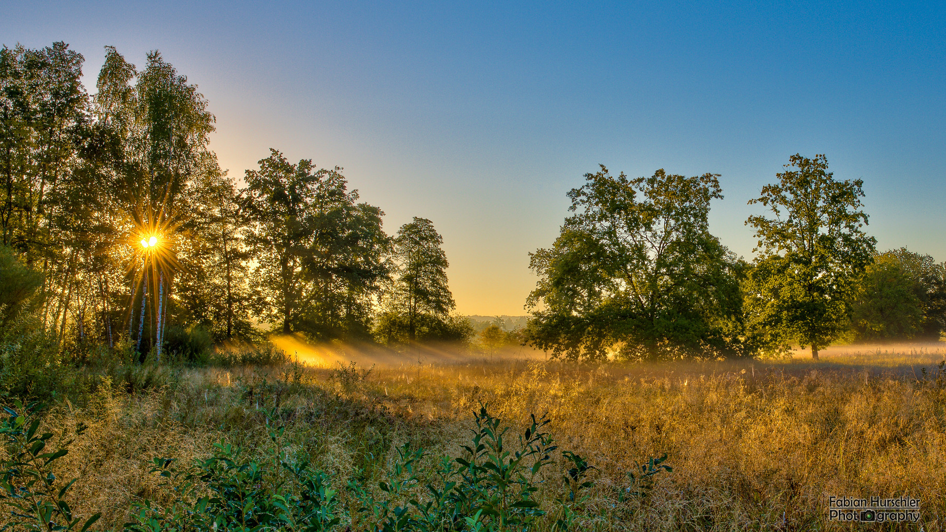 Sonnenstrahlen im Morgentau