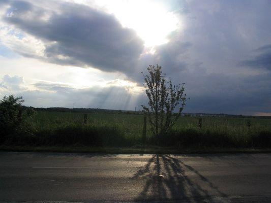 Sonnenstrahlen nach starkem Regen