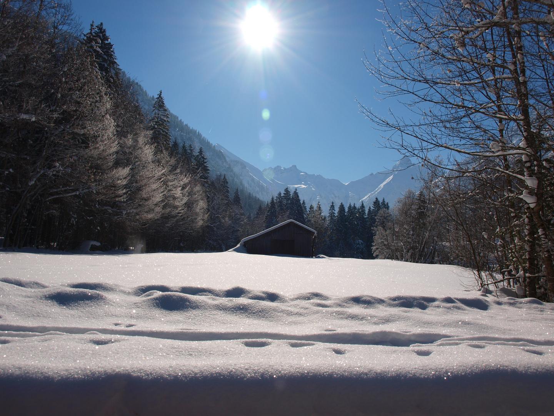Sonnenstrahlen..wärmen den Schnee