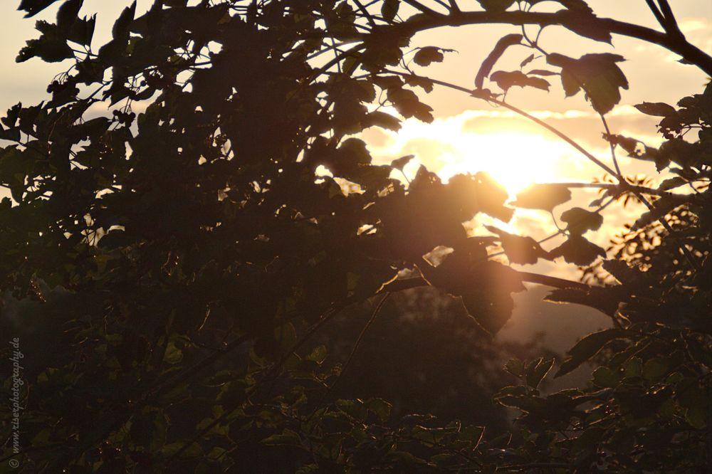 Sonnenundergang vom 5,09,2013 In Annaberg-Buchholz