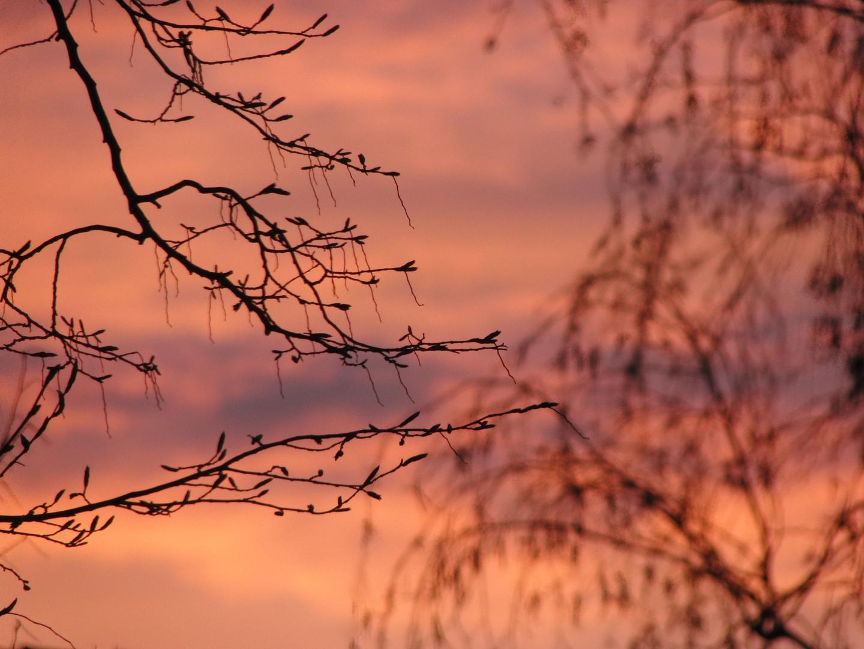Sonnenuntergang....