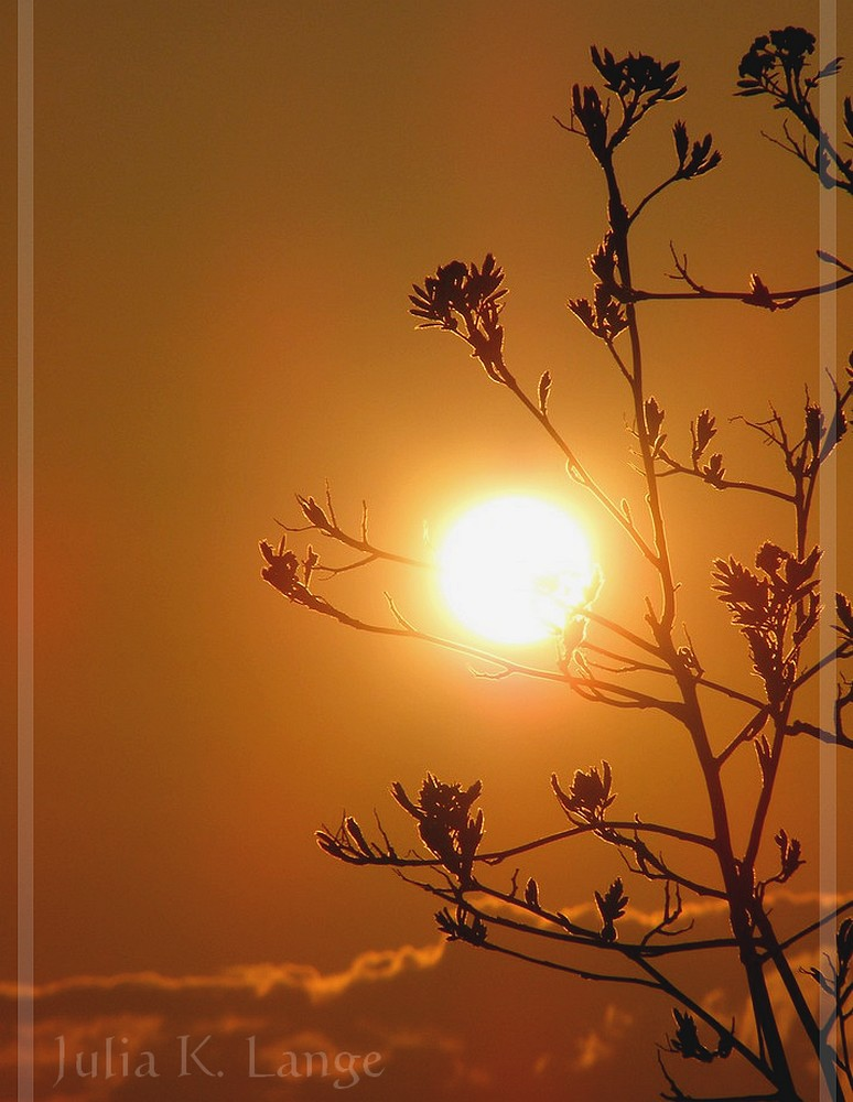 Sonnenuntergang 16.04.08
