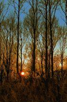 ...Sonnenuntergang (2)